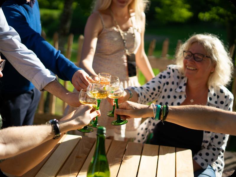 Auf dem Bild sieht man Freunde, die auf einen Wein anstoßen.